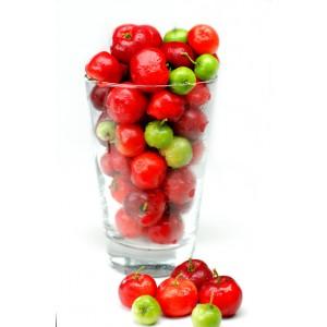 Acérola cerise antioxydant naturel bio