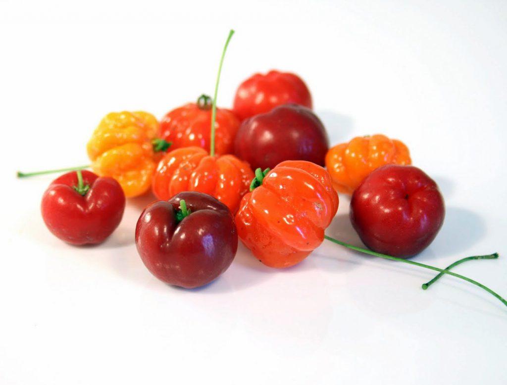 L'acérola bio, une « cerise » pleine de vitamines